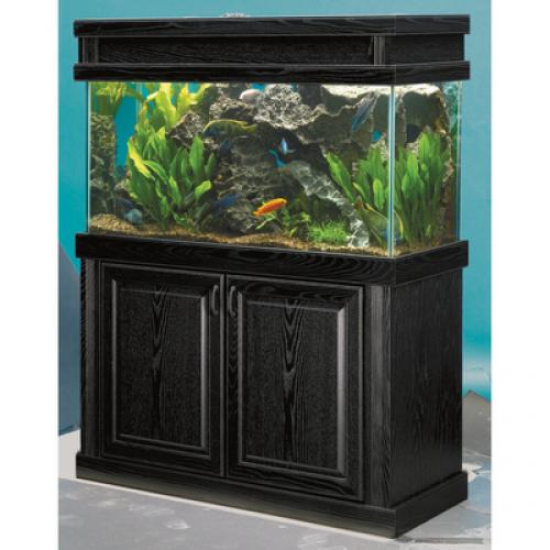 fish tank maintenance prices jpeg fish tank aquariums
